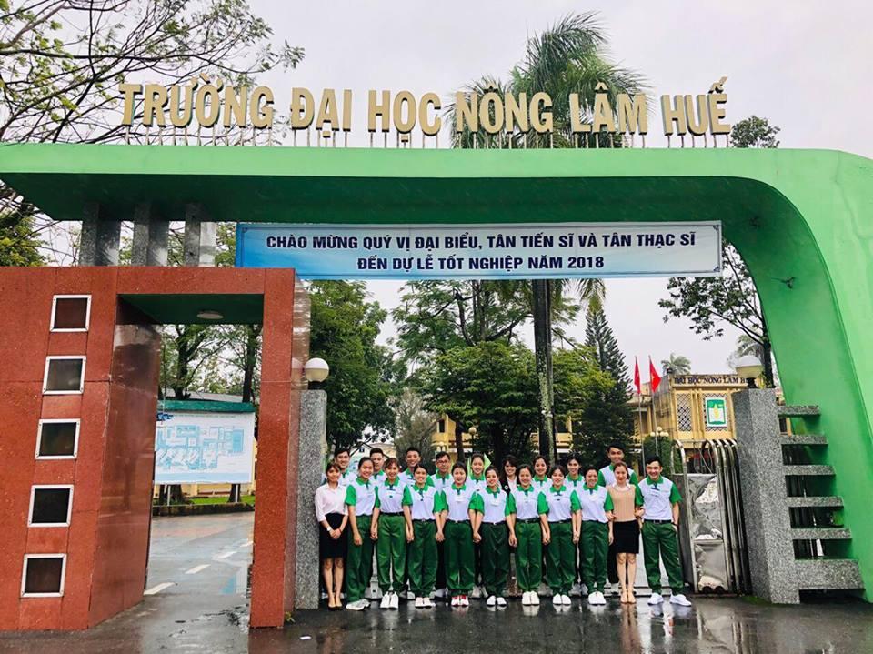 Điểm chuẩn Đại học 2020 – ĐH Nông Lâm – ĐH Huế
